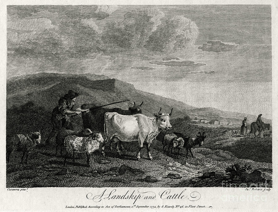 A Landskip And Cattle, 1774. Artist Drawing by Print Collector