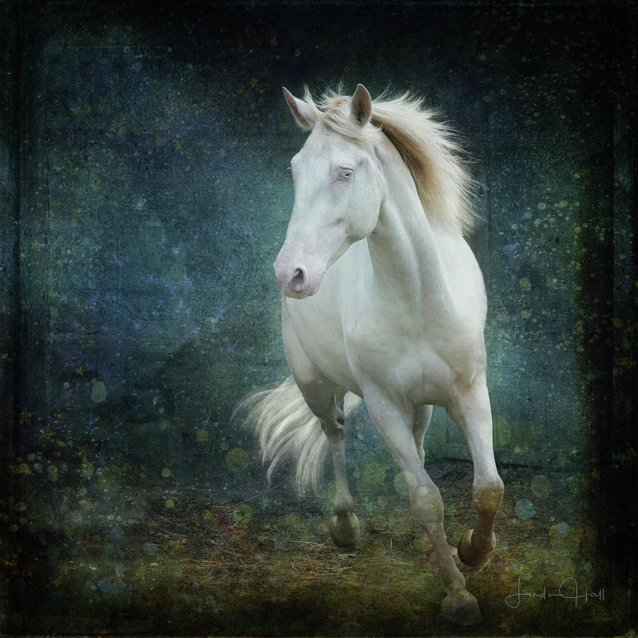 Horse Digital Art - A Little Bit of Flash by Linda Lee Hall