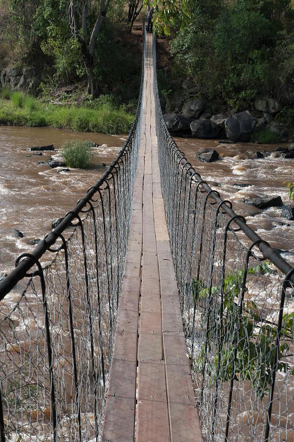 A Long Suspension Bridge Over A River Photograph by Diane Levit / Design Pics