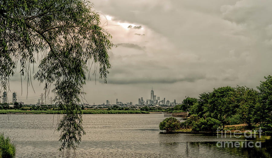 a look at NY city from a nature preserve by Sam Rino
