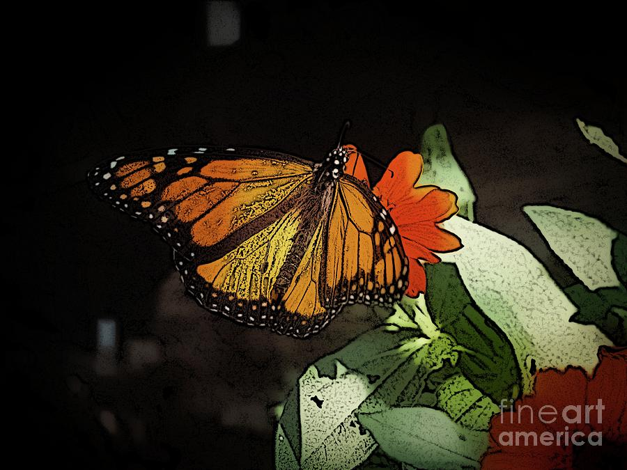 Butterfly Photograph - A Monarch in the Garden  by Gina Matarazzo
