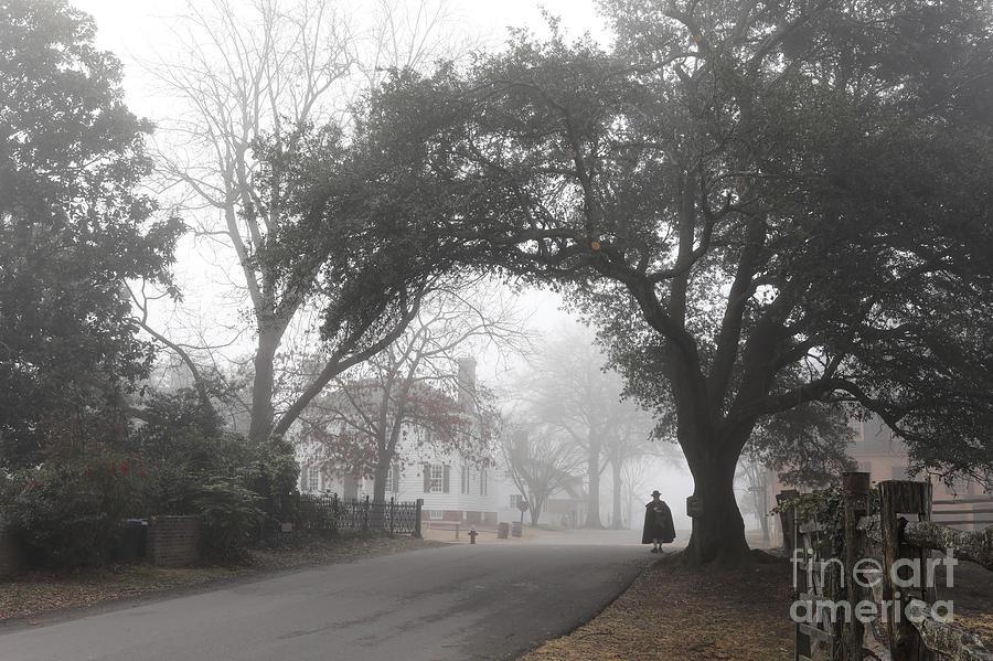 A Morning Walk by Rachel Morrison