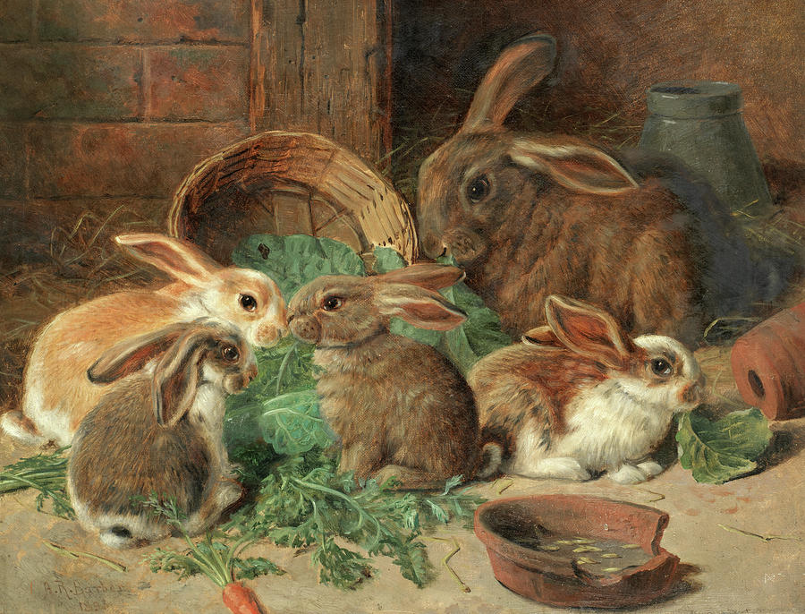 Mother Rabbit Painting - A Mother Rabbit and her young by Alfred Richardson Barber