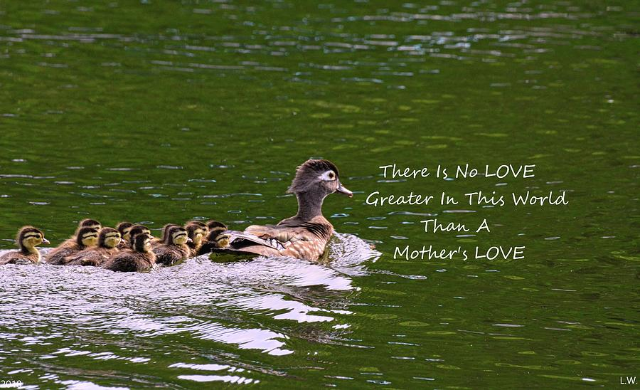 A Mother's Love by Lisa Wooten