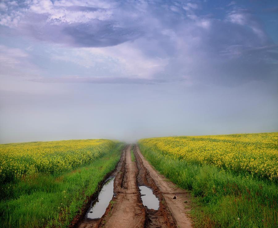 A Muddy Trail by Dan Jurak