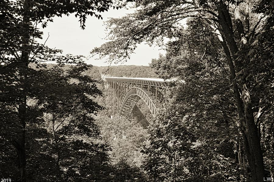 A Nature Framed View Of New River Gorge Bridge West Virginia Black And White by Lisa Wooten
