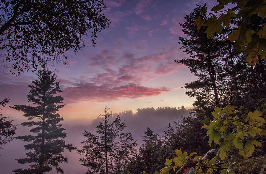 A New Day Begins by Spencer Bush