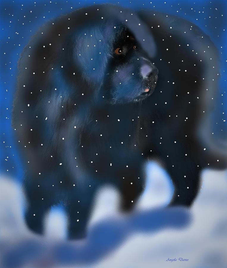 A Newfie Winter by Angela Davies