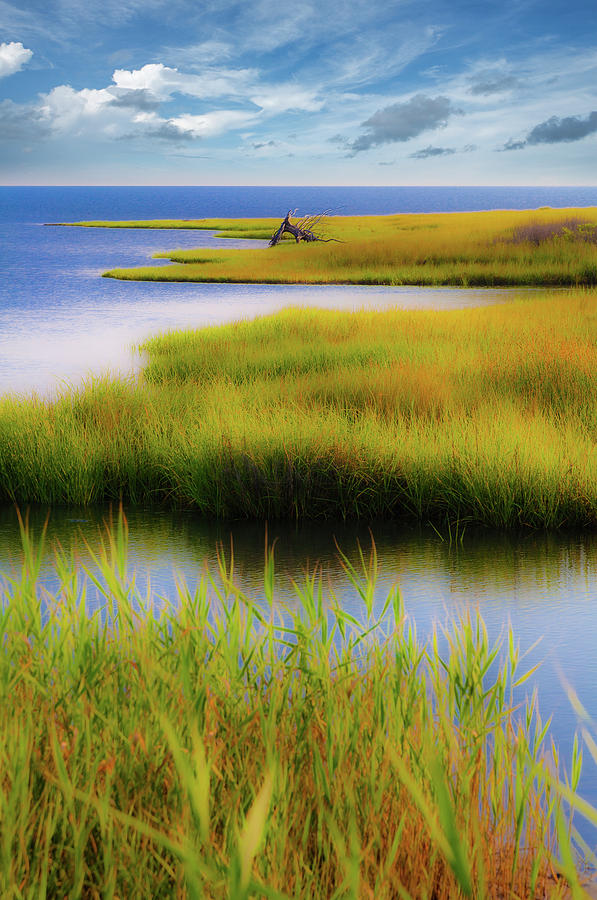 A Perfect Day on the Outer Banks by Dan Carmichael
