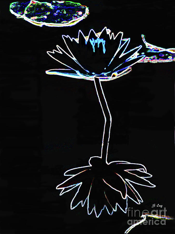 A Perfect Flower Drawing 300 by Sharon Williams Eng
