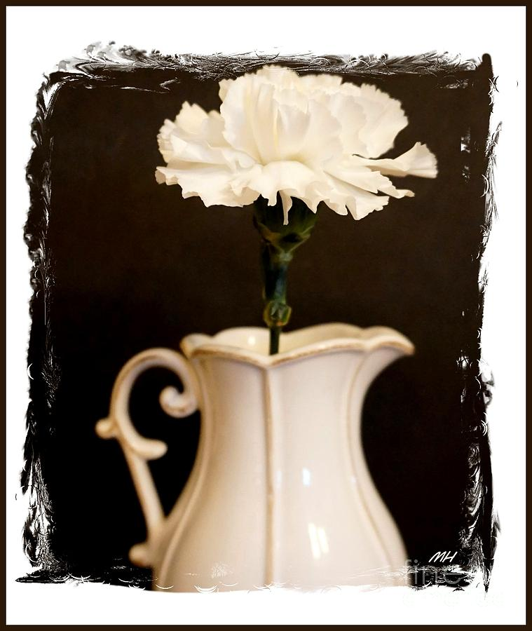 Photo Photograph - A Picture Of A Flower In A Pitcher by Marsha Heiken
