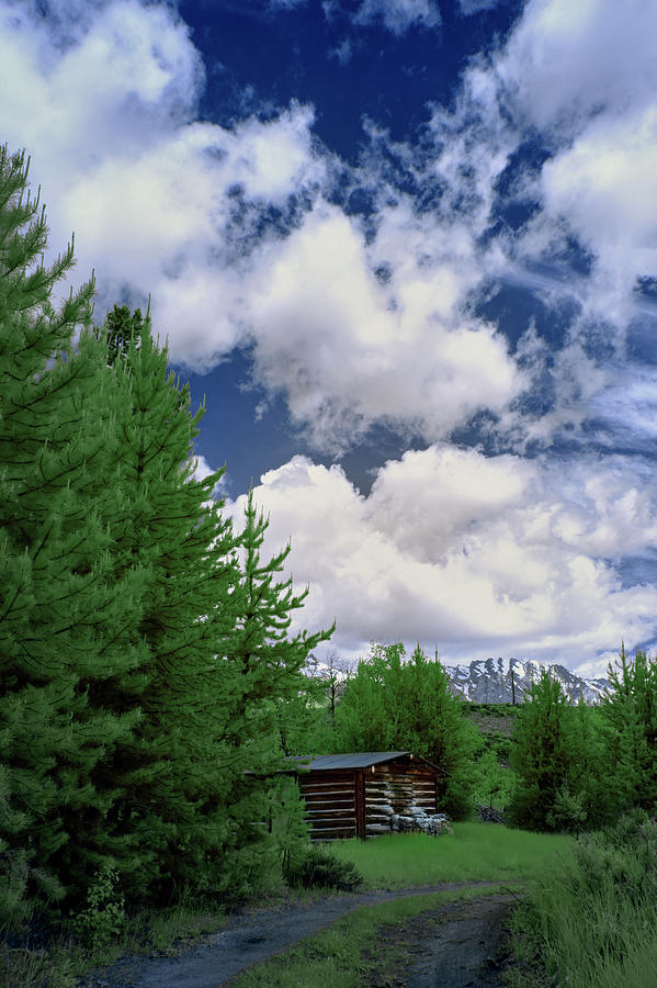 Tetons Photograph - A Place In The Tetons by Jon Glaser