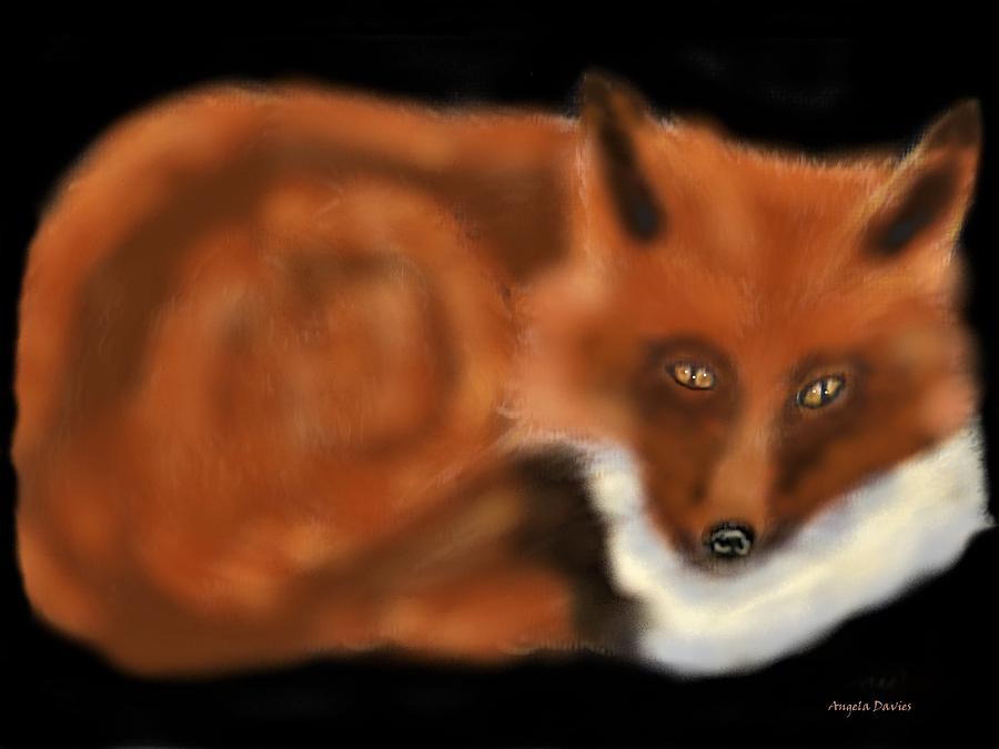 A Rainy Day Fox by Angela Davies