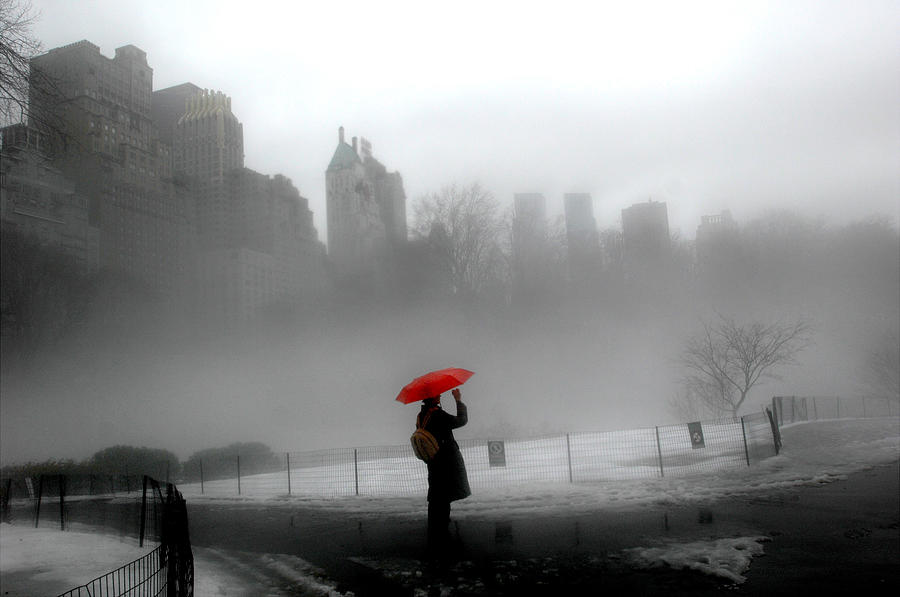 A Red Umbrella Provides The Only Photograph by New York Daily News Archive