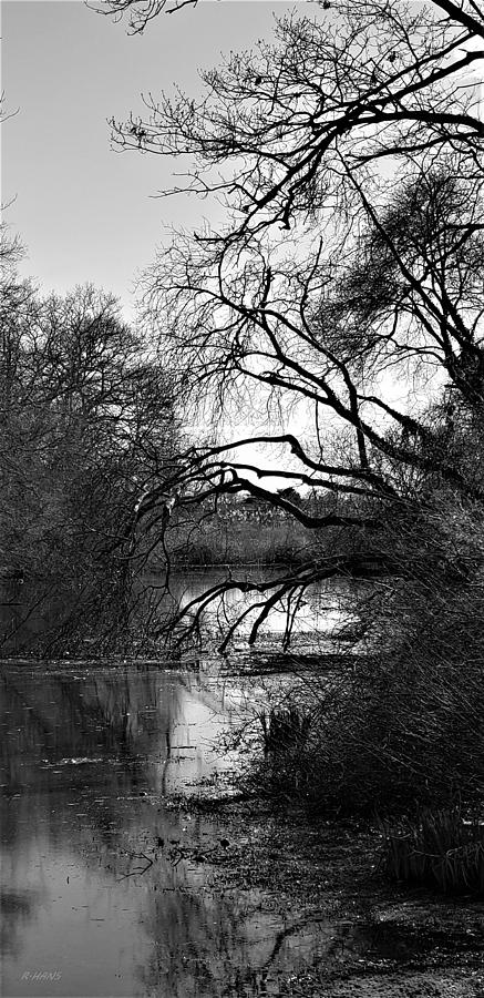 A RIVER VIEW 4 U 2 in B W by Rob Hans