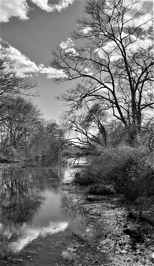 A RIVER VIEW 4 U 3 in B W by Rob Hans