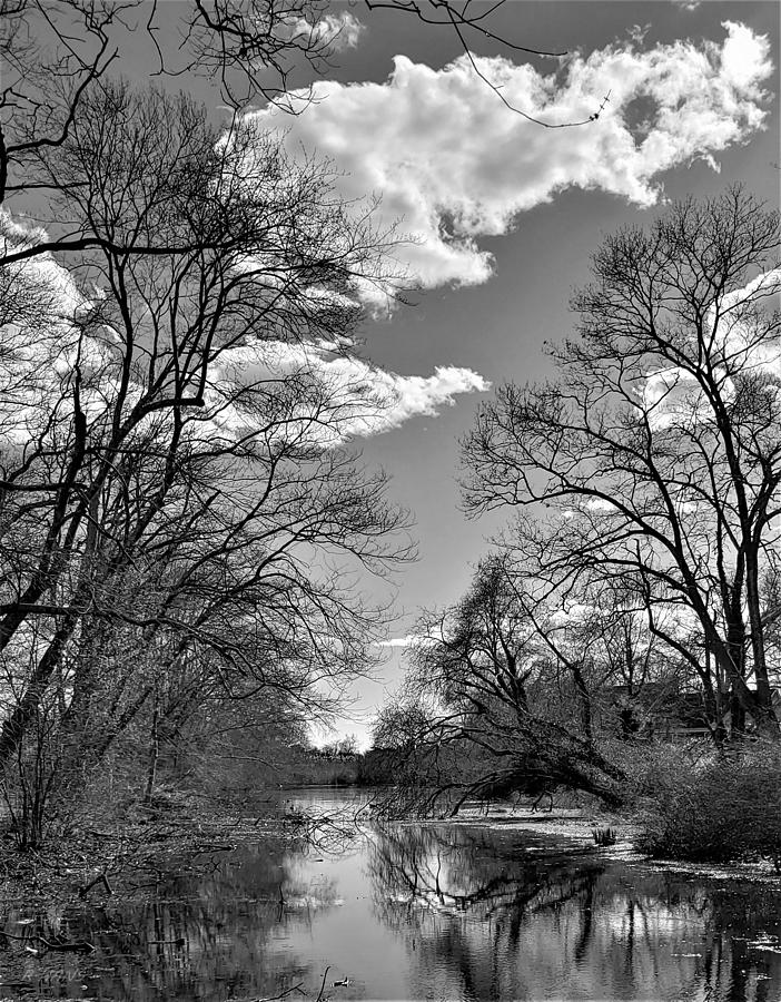 A RIVER VIEW 4 U in B W  by Rob Hans