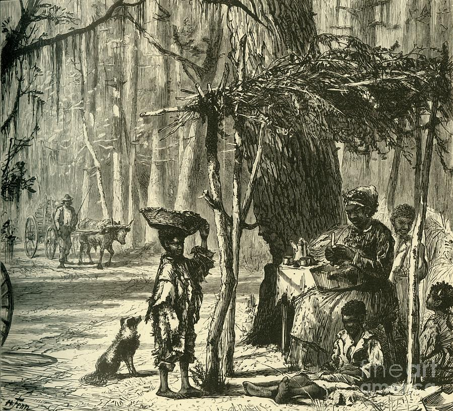 A Road-side Scene Near Charleston Drawing by Print Collector