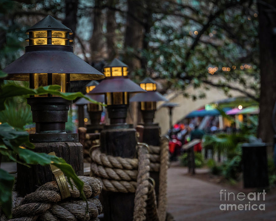 A row of lamps by Agnes Caruso