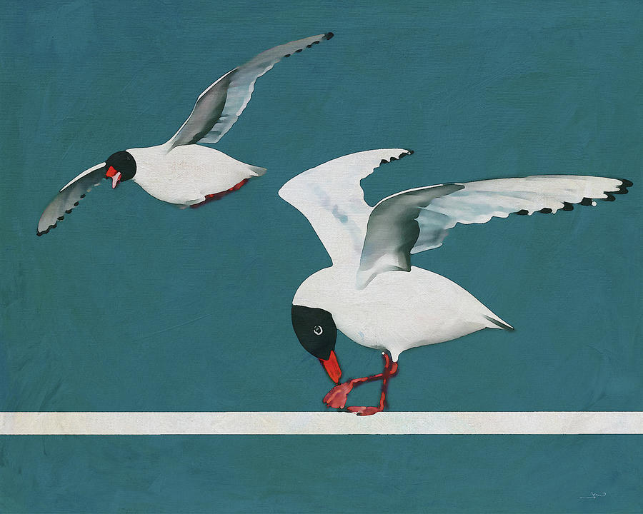 A seagull has its place by Jan Keteleer