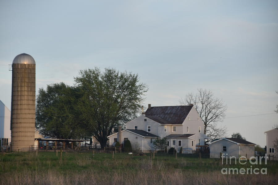 A Serene Amish Homestead by Christine Clark