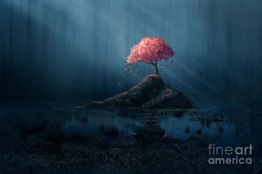 Beam Digital Art - A Single Pink Tree In A Dark Blue by Amanda Carden