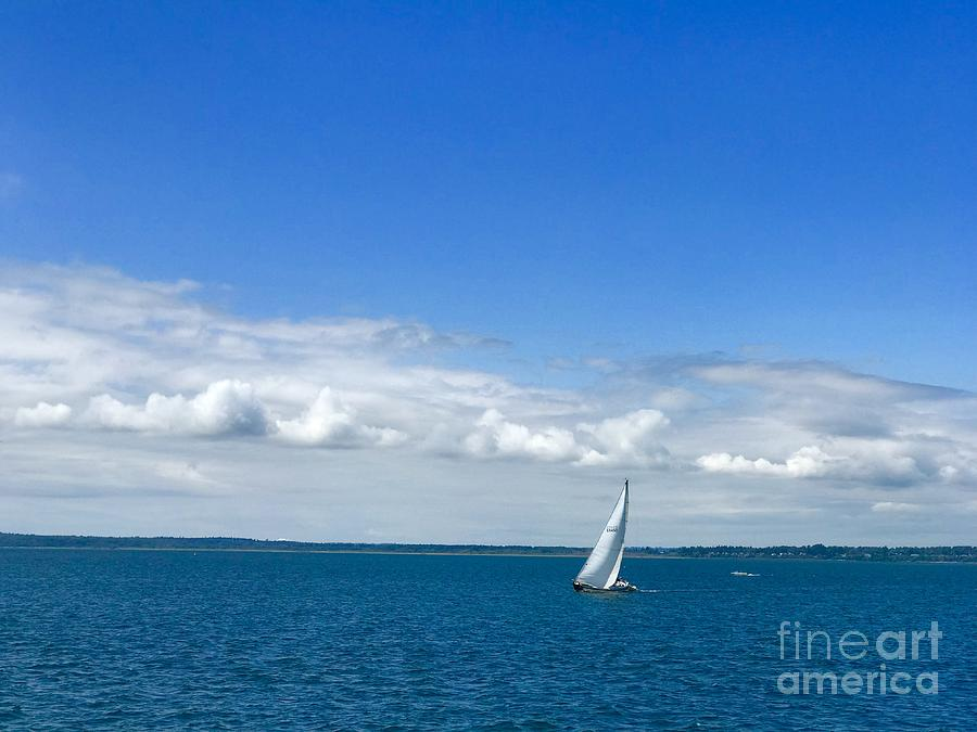 A Single Sailboat in Blue by Suzanne Lorenz