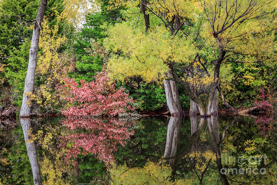 A small hidden pond in fall color in Oklahoma City by Richard Smith