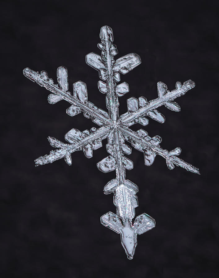 A Snowflakes Tail by Brian Caldwell