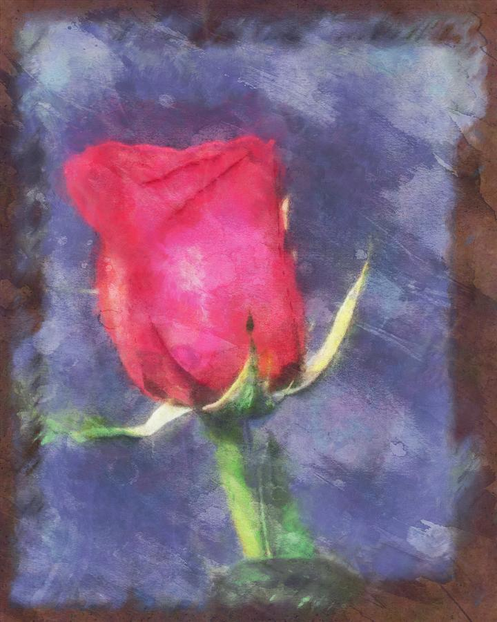 A Soft Rose for Emily by Mario Carini