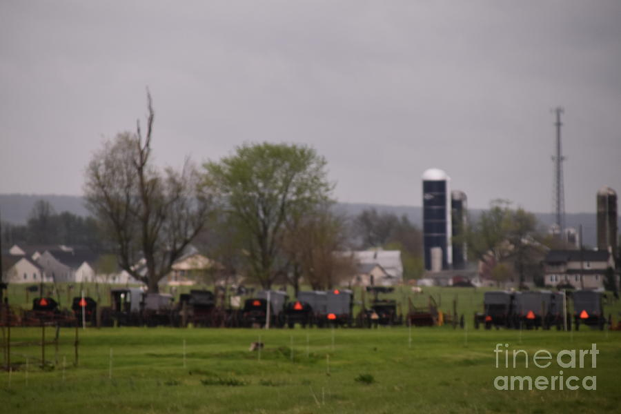 A Spring Amish Gathering by Christine Clark