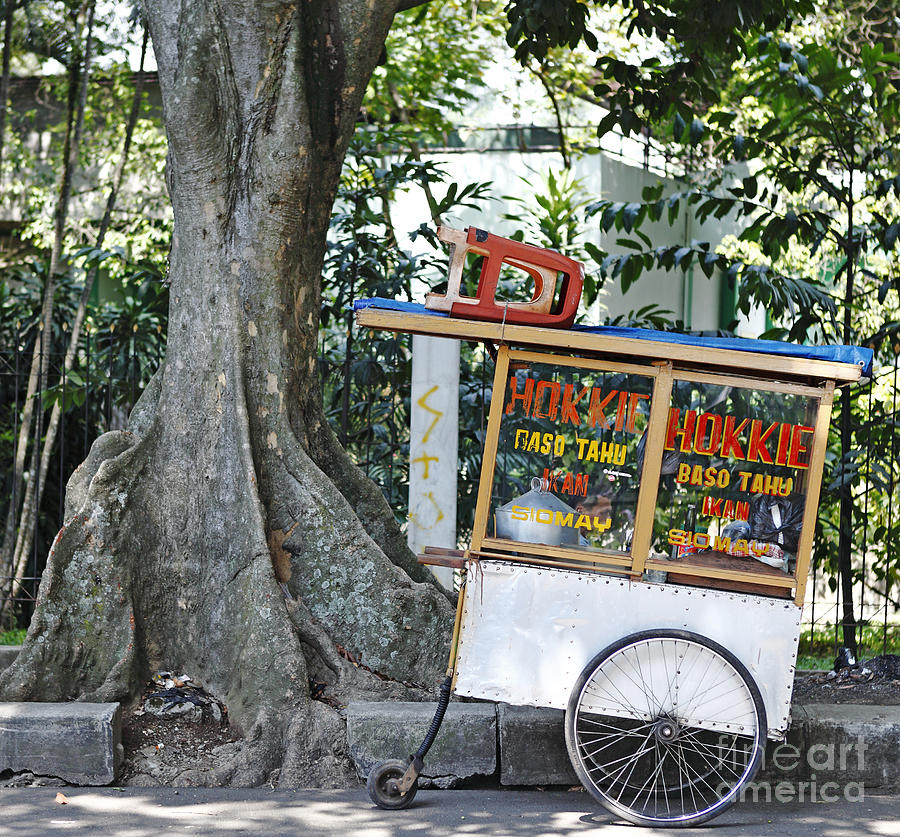 Wheels Photograph - A Street Food Vendor Selling Fried by Gwoeii