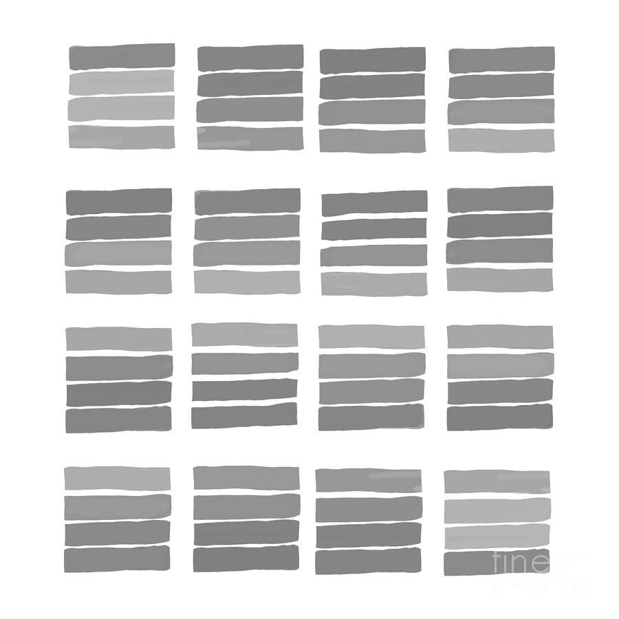 A Study In Color Gray Digital Art
