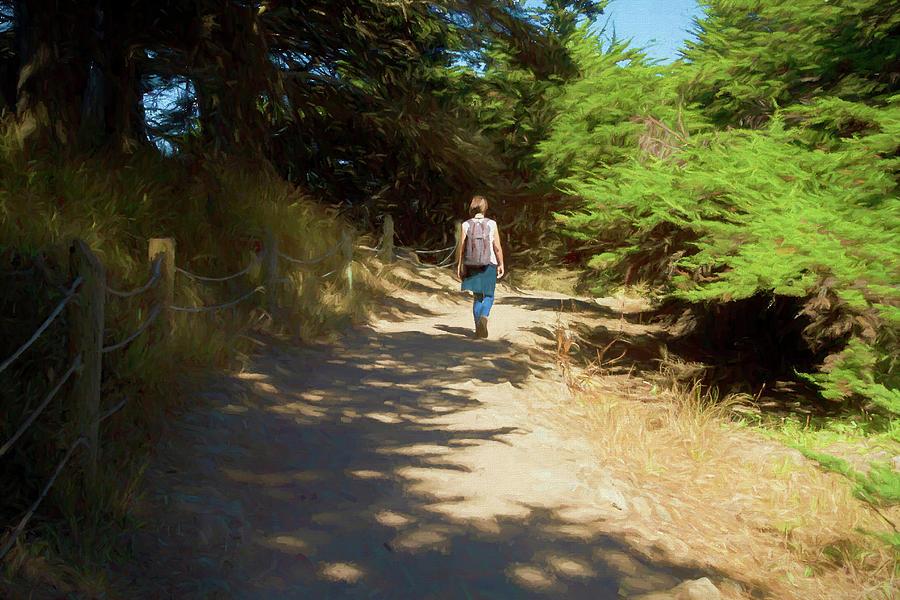 A Summer Hike at Lands End Trail by Bonnie Follett