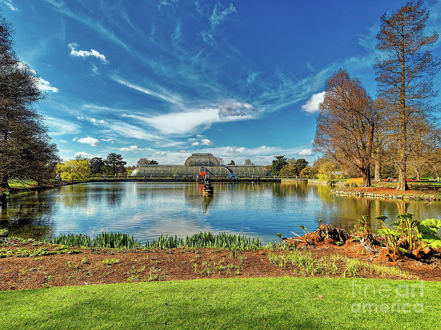 A sunny morning at Kew Gardens by Leigh Kemp