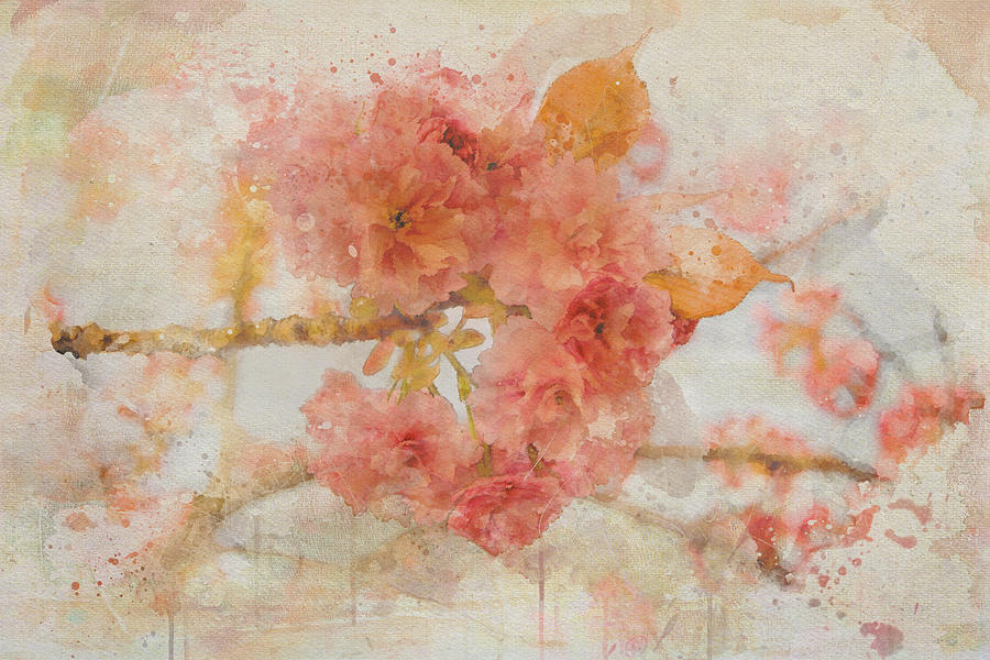A Taste of Spring by Marilyn Wilson