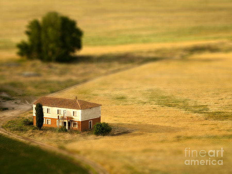 Farmhouse Photograph - A Tilt Shifted Country House On A by Ikerlaes