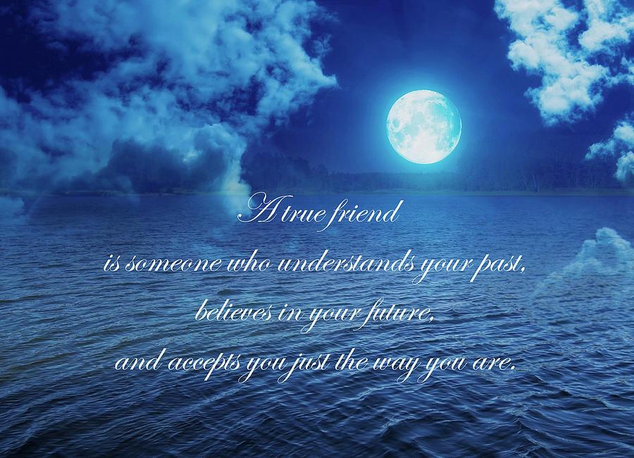 Friend Mixed Media - A True Friend  by Johanna Hurmerinta