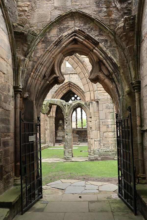 A View in Elgin Cathedral by Dave Mills