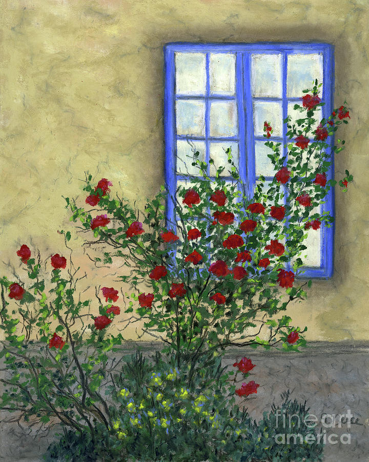 A View of Roses by Ginny Neece