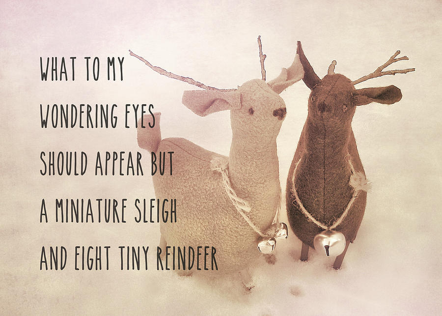 Reindeer Photograph - A Visit From Saint Nicholas Quote by JAMART Photography
