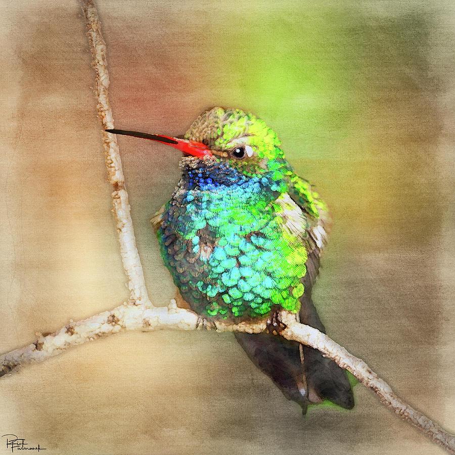 A Visual Feast in Digital Watercolor by Rick Furmanek