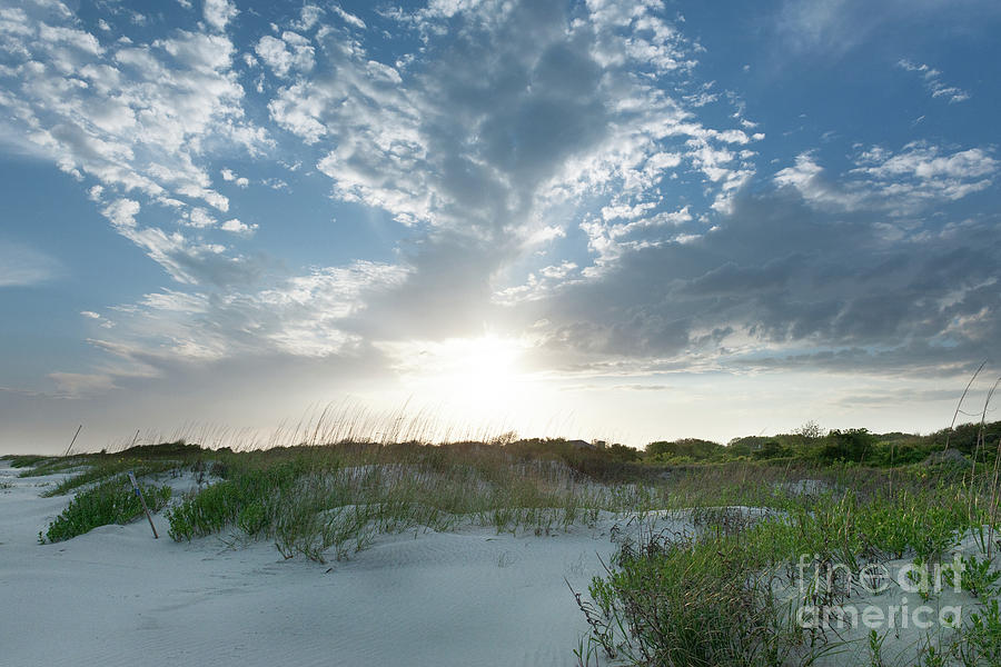 A Walk Along the Beach - Sullivan's Island South Carolina by Dale Powell