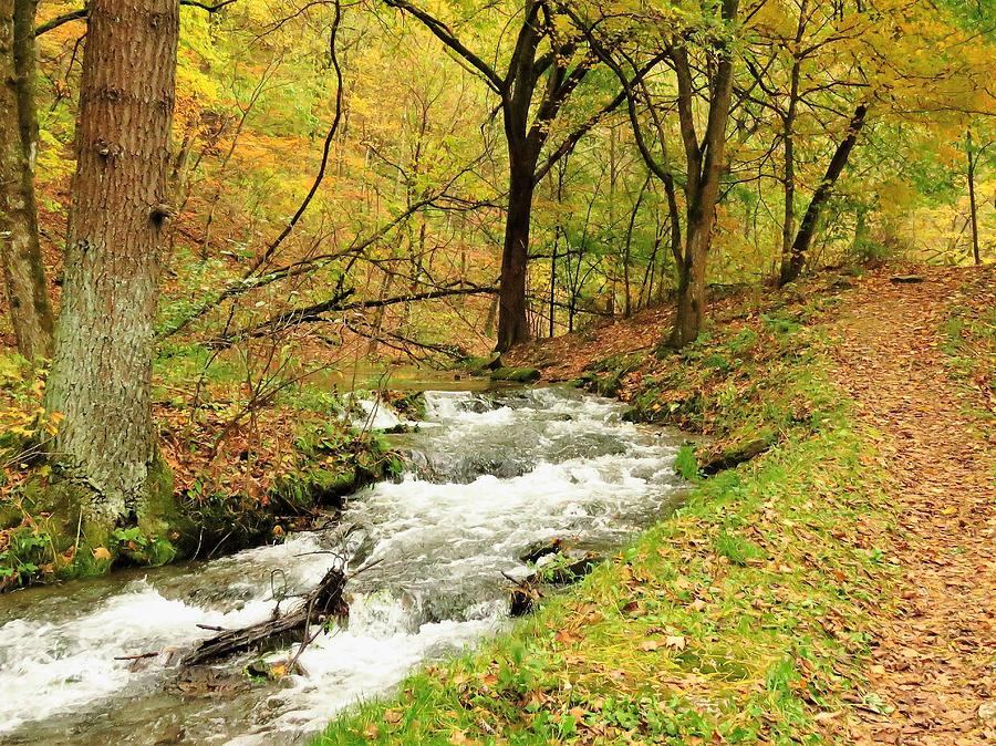 A Walk at Twin Springs  by Lori Frisch