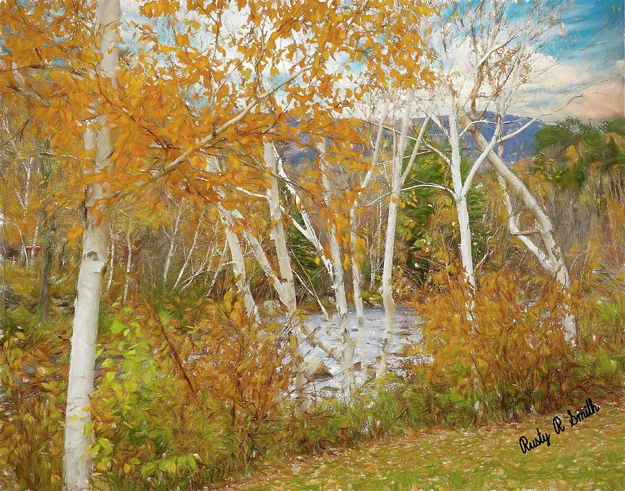 A white birch landscape. by Rusty R Smith
