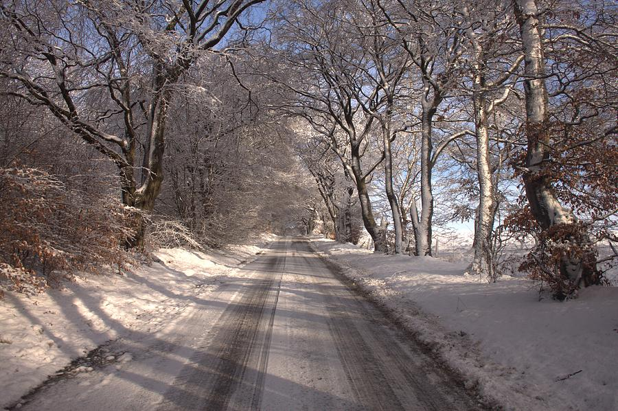 Winter Photograph - A Winter Road by Alister Harper