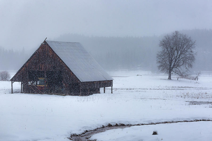 A Winter Scene by Don Hoekwater Photography