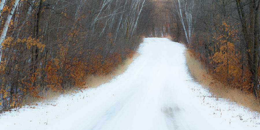 A Winter's Drive by Penny Meyers