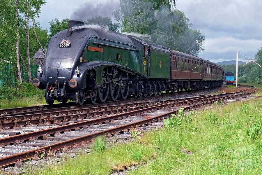 A4 Pacific 60009 Union Of South Africa by David Birchall