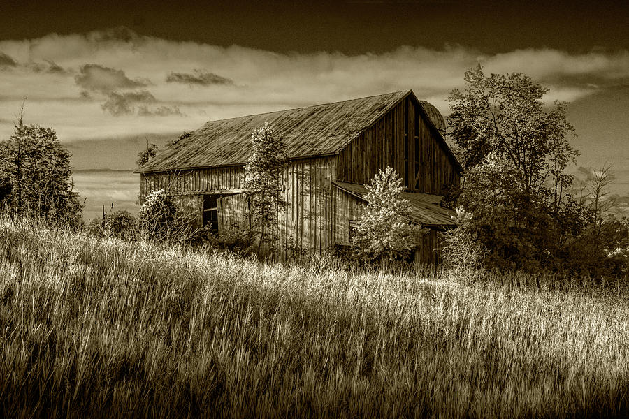 Abandoned Barn in Sepia Tone on a Farm in the Early Morning Sunl by Randall Nyhof